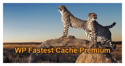 WP Fastest Cache Premium v1.5.9 Full İndir